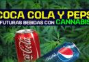 Gaseosas con sabor a marihuana
